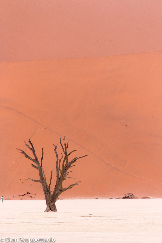 Namibia-18.jpg