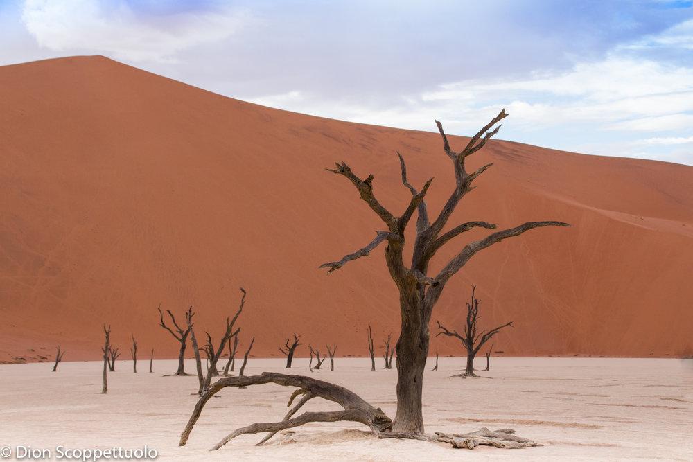 Namibia-19.jpg