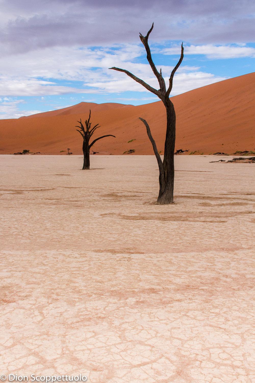 Namibia-20.jpg