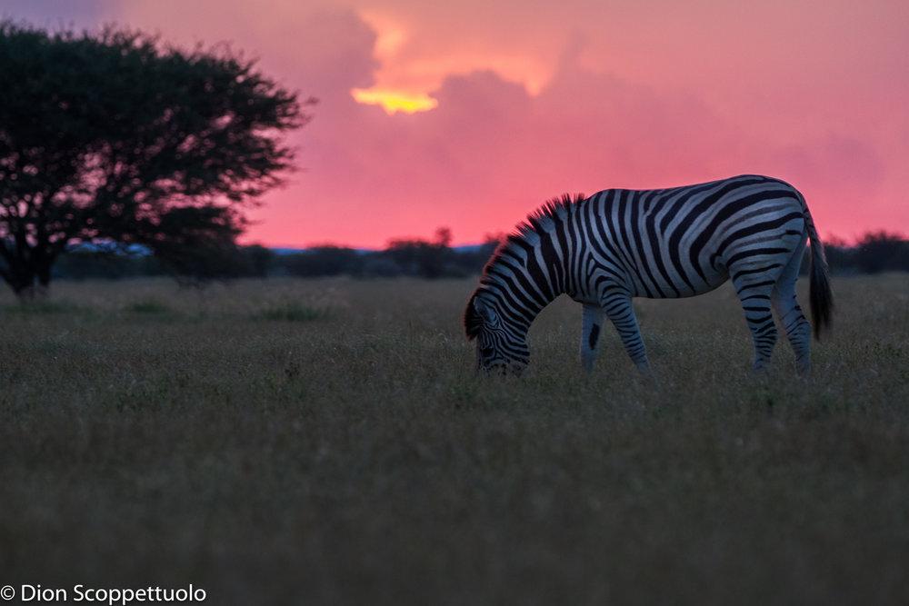 Namibia-83.jpg