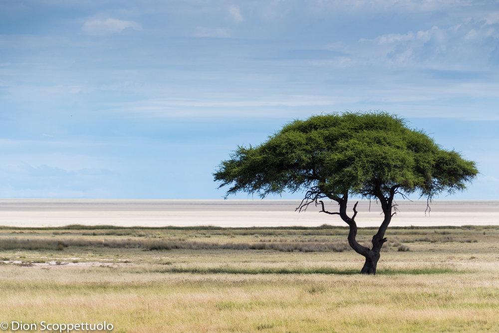 Namibia-90.jpg
