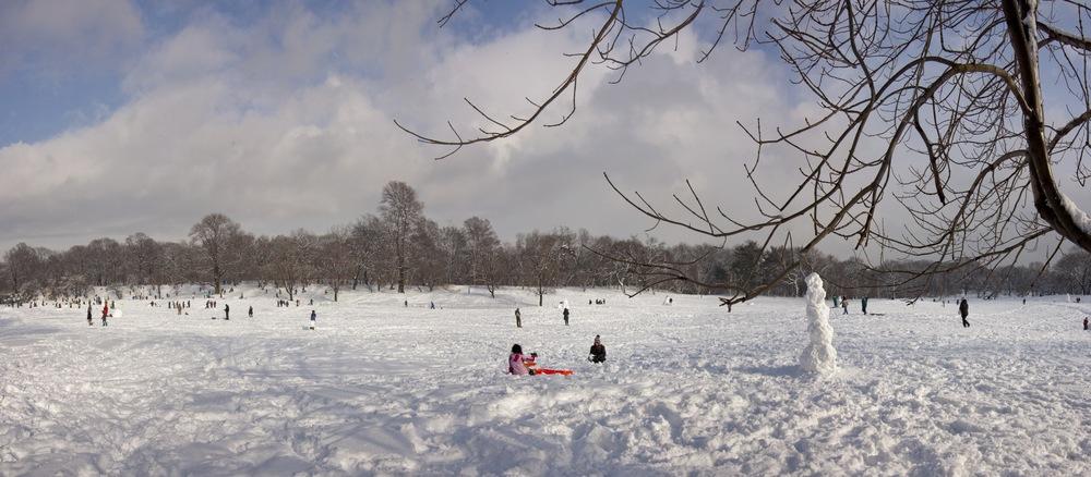Prospect Park- Brooklyn, NY