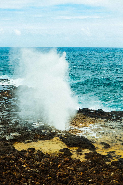 Kauai_day1_ (175 of 310)-2.jpg
