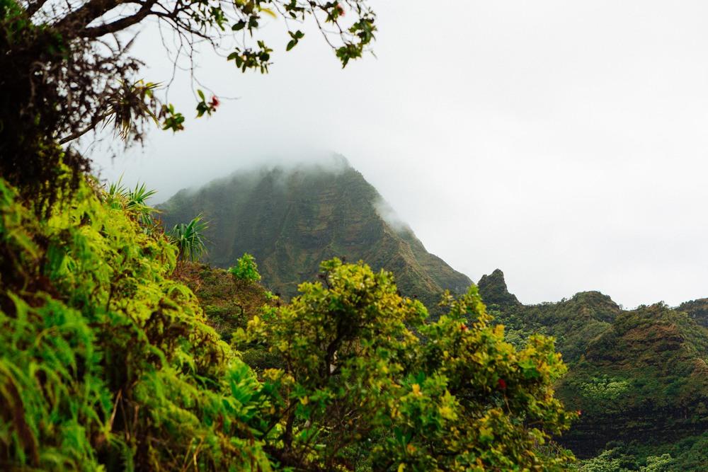 Kauai_day2_-21-2.jpg