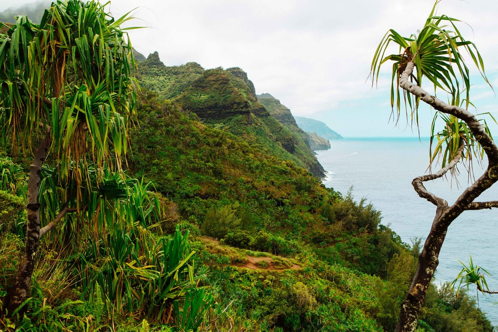 Kauai_day2_-60-2.jpg