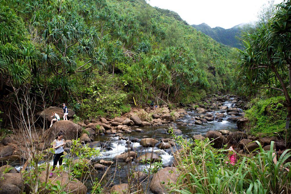 Kauai_day2_-209-2.jpg