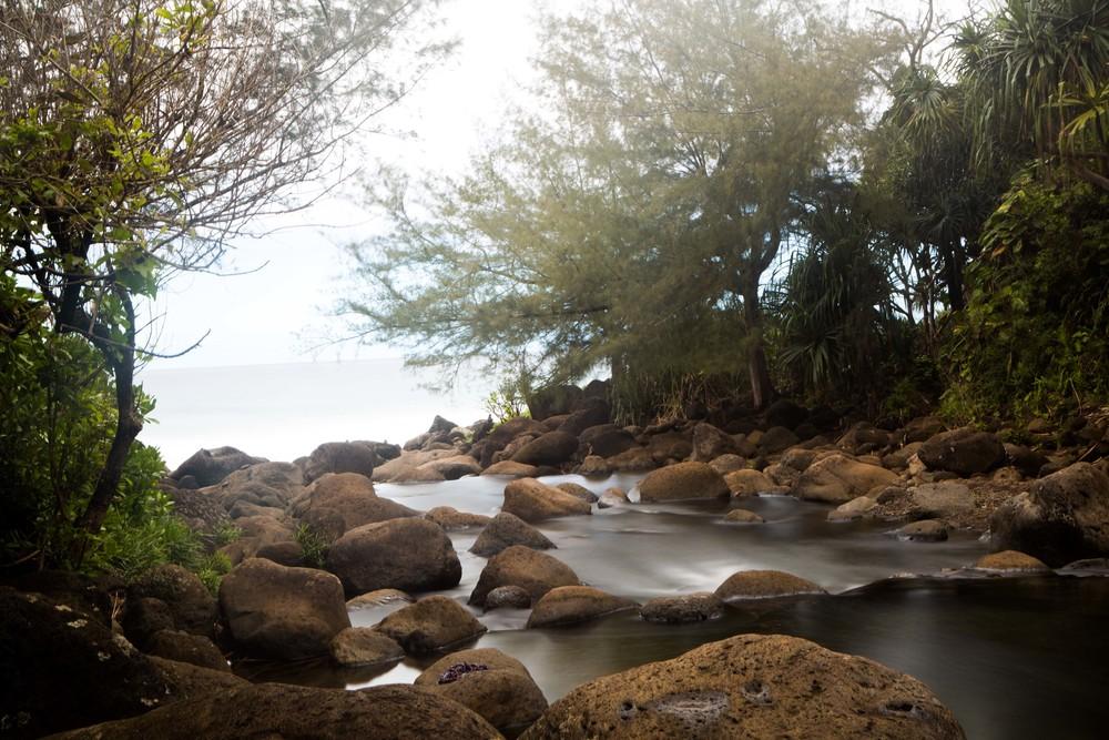 Kauai_day2_-249-2.jpg