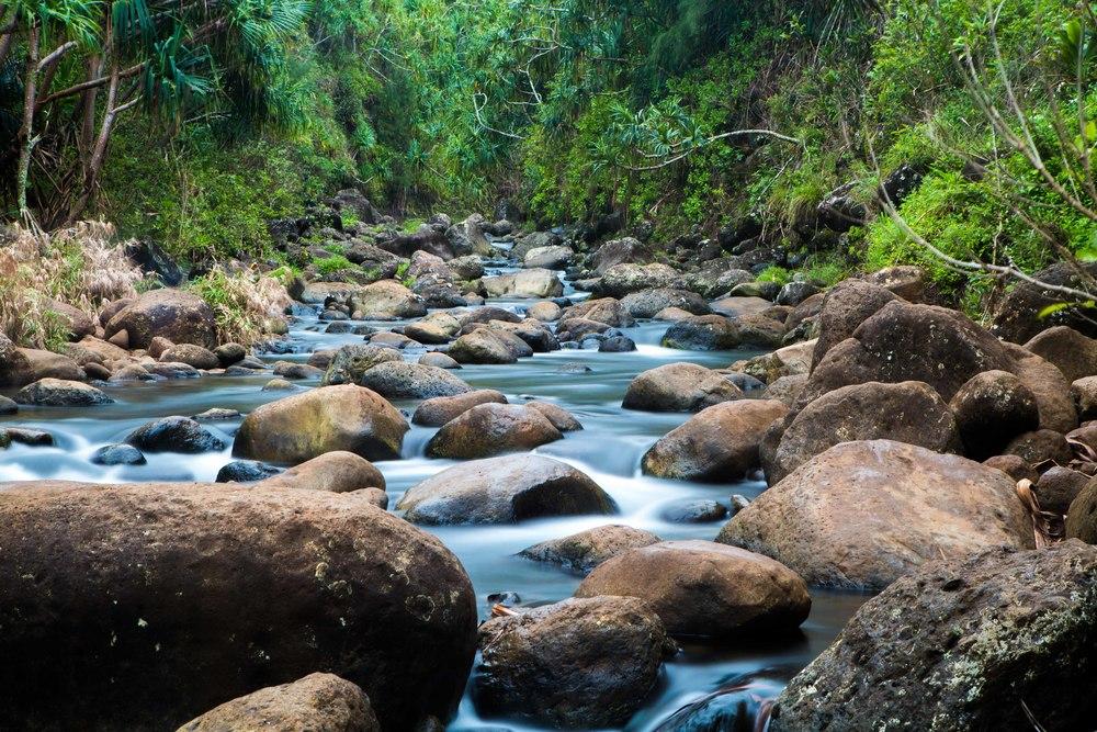 Kauai_day2_-250-2.jpg