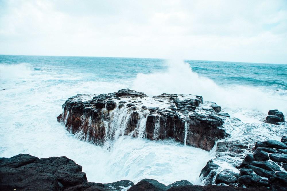 Kauai_day3)-448-2.jpg