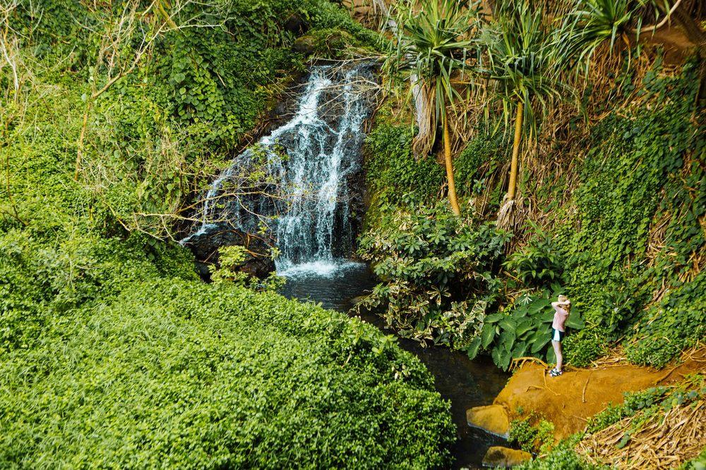 Kauai_day3)-621-2.jpg
