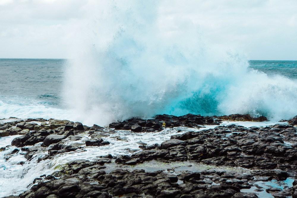 Kauai_day3)-773-2.jpg