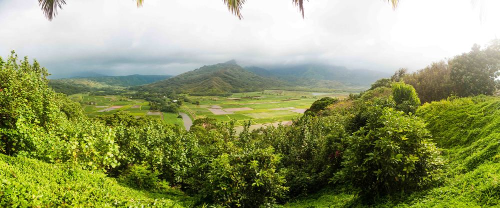 Kauai_day3)-868-Pano-2.jpg
