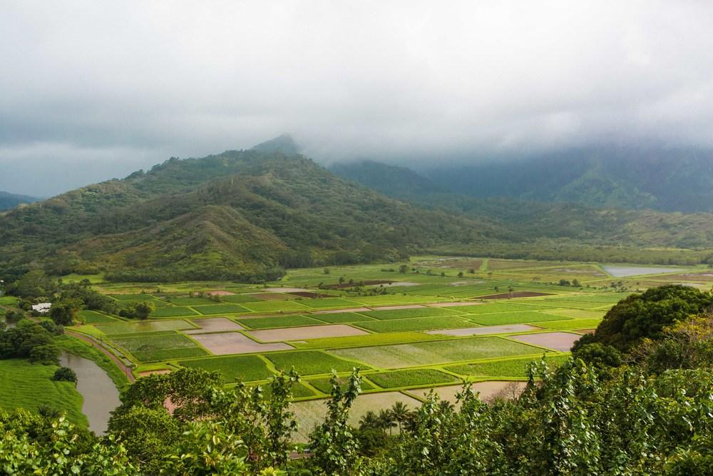 Kauai_day3)-874-2.jpg