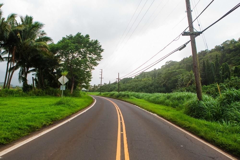 Kauai_day3)-962-2.jpg