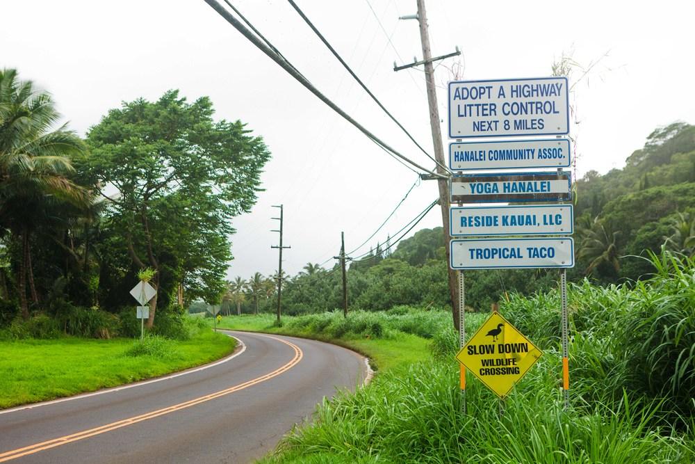 Kauai_day3)-972-2.jpg