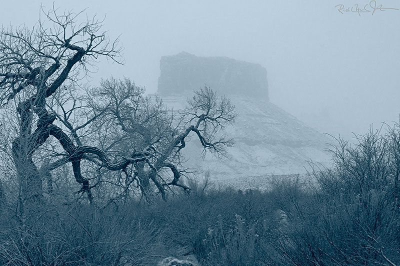 Ghostly rock formations during a Castle Valley snow storm.
