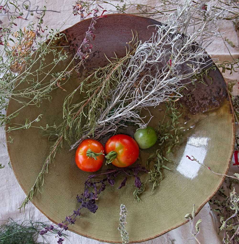First tomatoes, and only a few weeks left before first frost.  From left to right, hyssop [outside the dish], then rosemary, curry above the tomatoes, purple basil below the tomatoes, and another variety of hyssop.