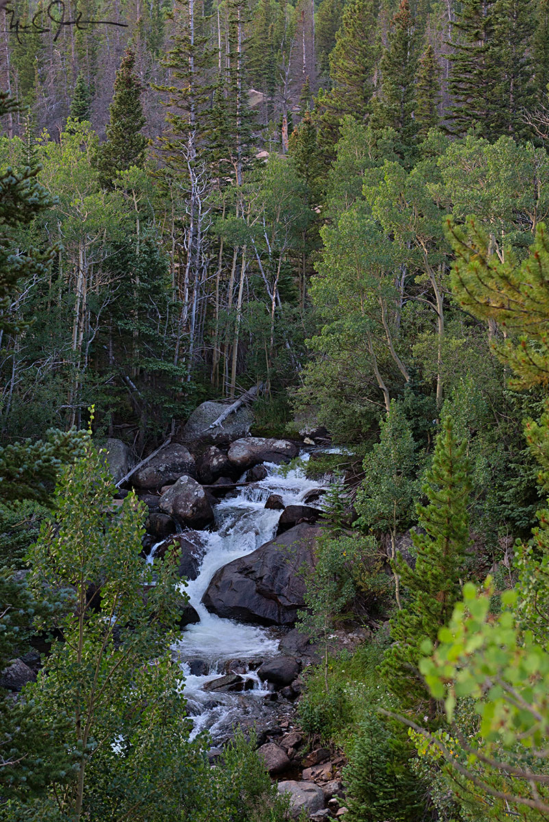 Glacier Creek, Rocky Mountain National Park.