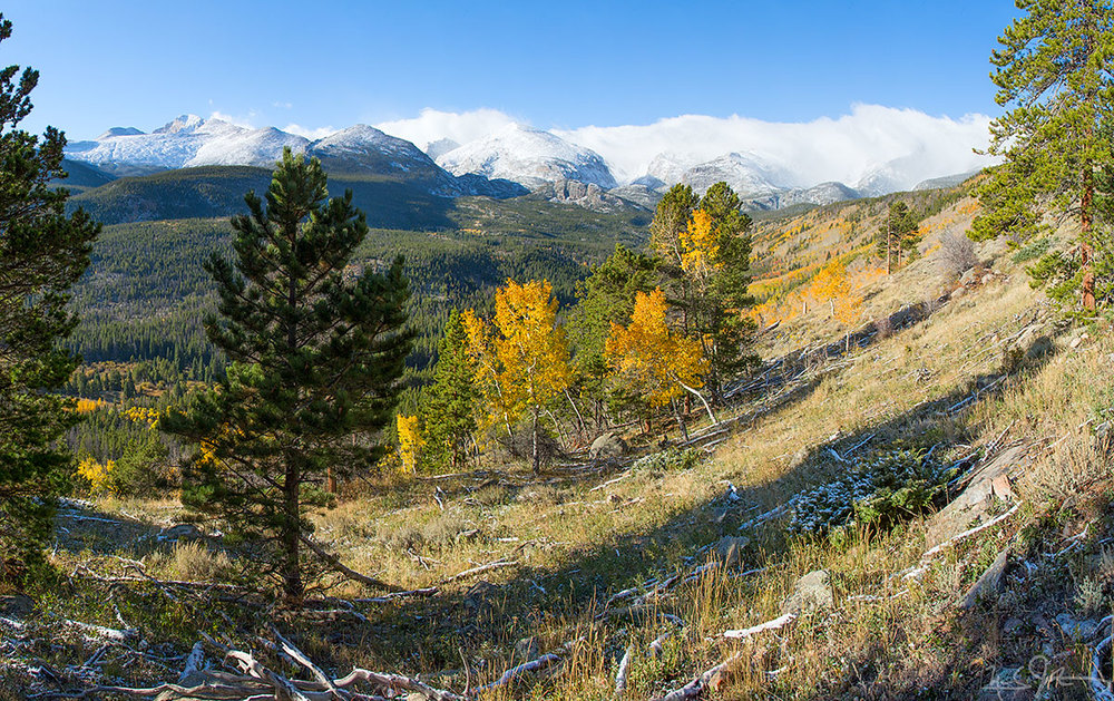 A wider panoramic view includes Long's Peak [elevation 14,259 feet] visible between the two pine trees at left.
