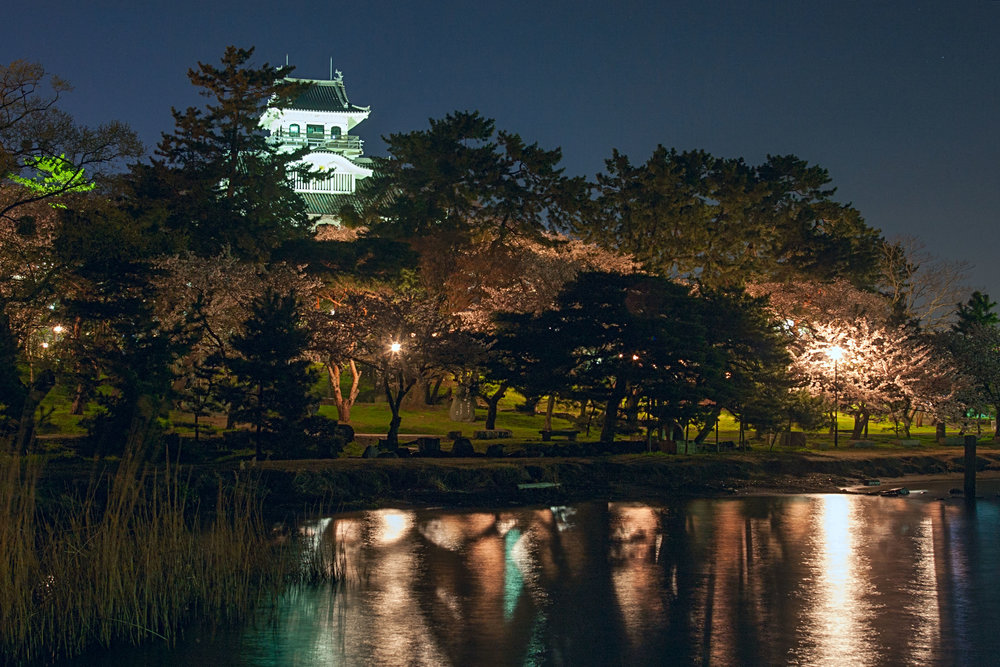 Nagahama Castle at night