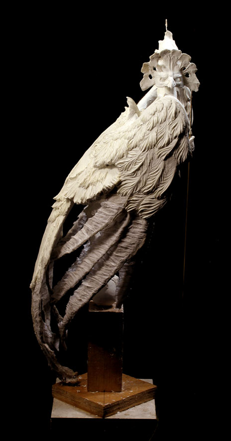 harpy-side-464wb.jpg