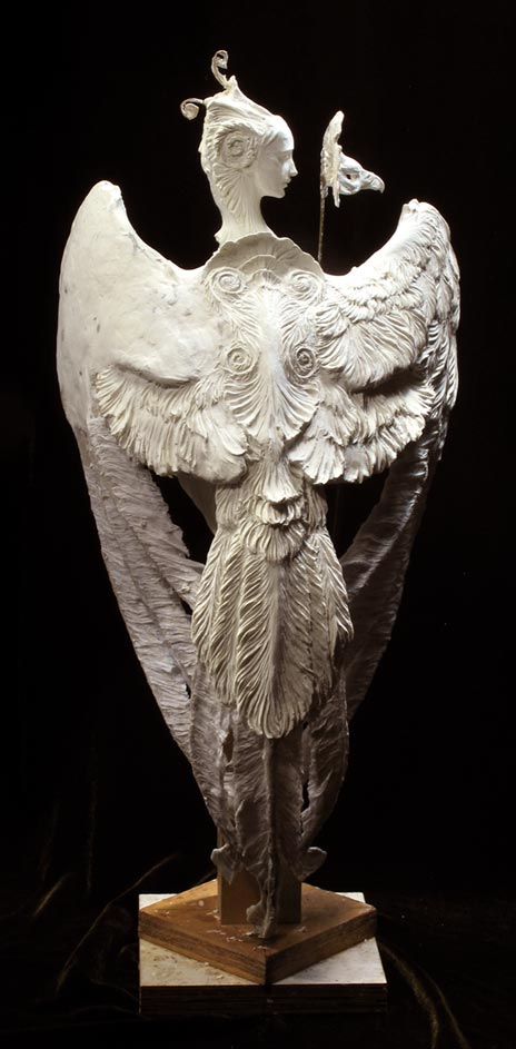 harpy-back-464wb.jpg