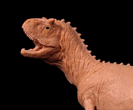 Carnotaurus head, prototype for the Carnegie Museum of Natural History's model dinosaur line.