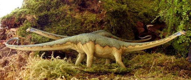 diplodocus-color.jpg