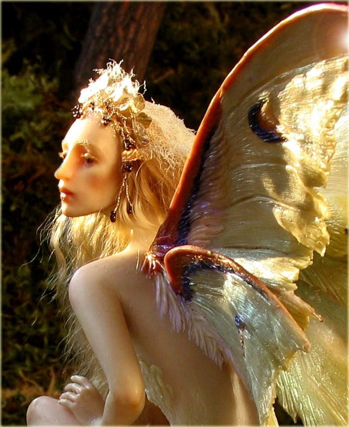 a_mushroom_fairy_700wb.jpg