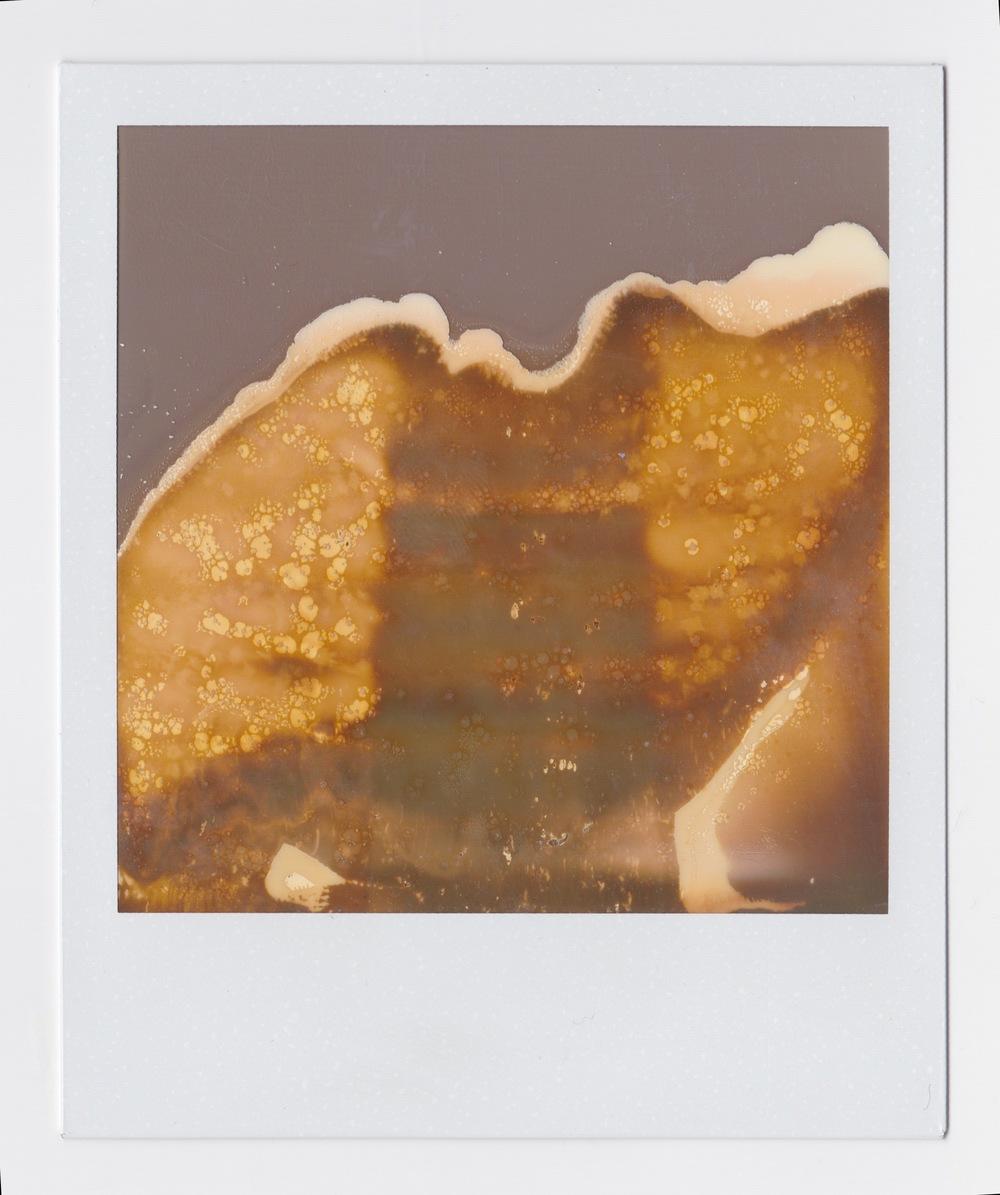 polaroid 2.jpeg