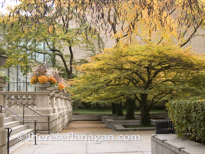 Autumn - Art Institute of Chicago South Garden