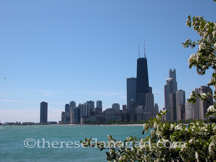 Chicago Skyline from Oak Street Beach