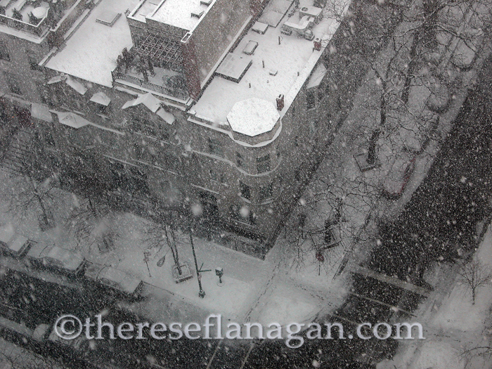 Snow Falling on Chestnut