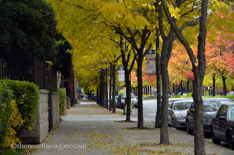 City Sidewalks - Chicago - Autumn 2013