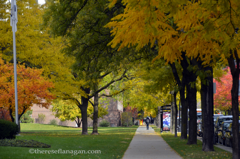 City Sidewalks - Autumn in Chicago 2013 (2)