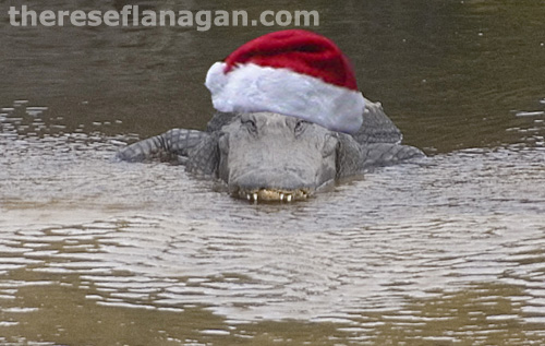 Merry Christmas from the Swamp