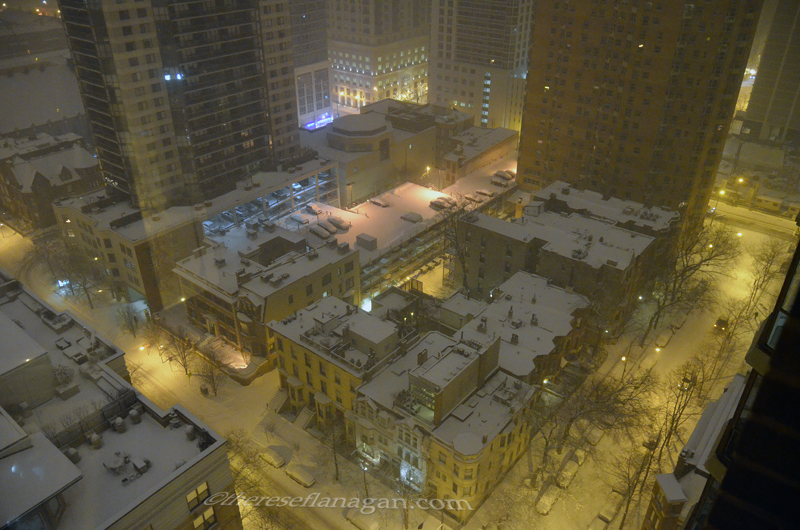 Winter Night on Chestnut 2014