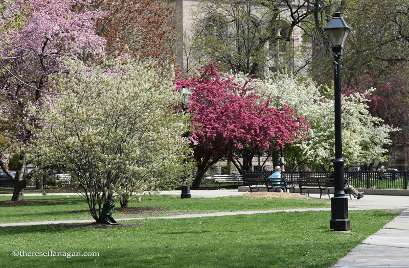 Washington Square Park, Chicago - Spring 2015