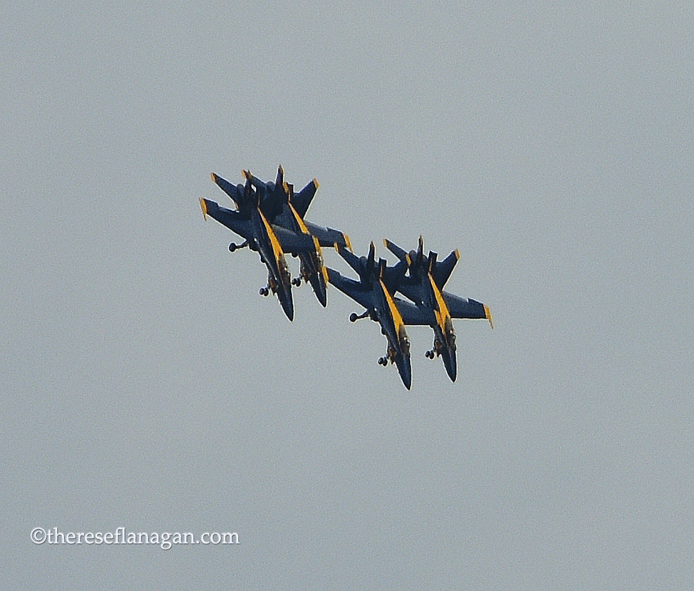 Blue Angels Nose Down 2015.jpg