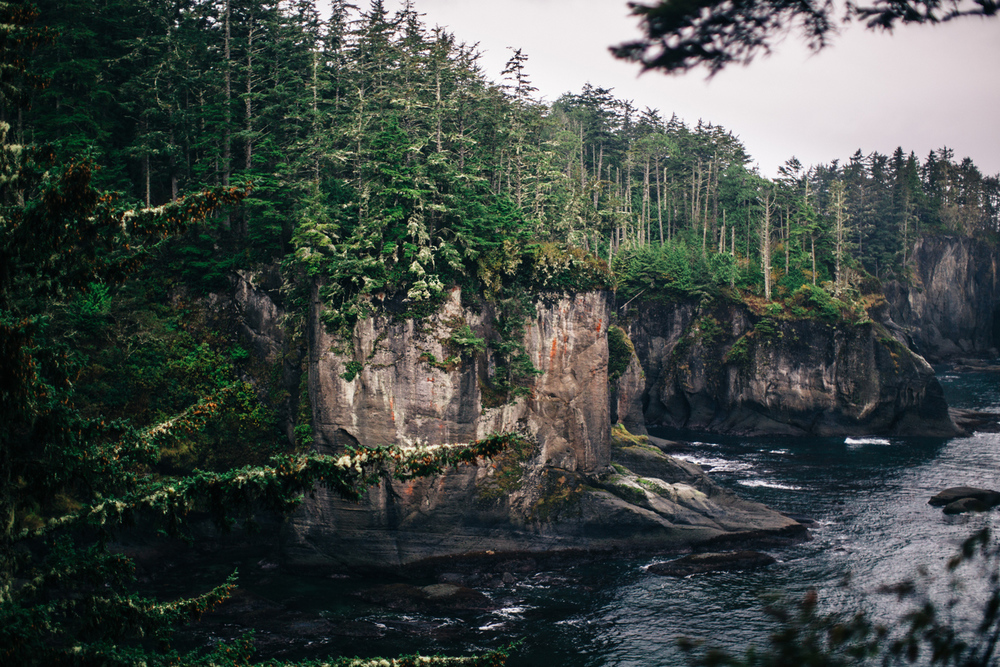 006-pnw-coastal-elopement-at-cape-flattery-by-seattle-wedding-photographer-ryan-flynn.jpg