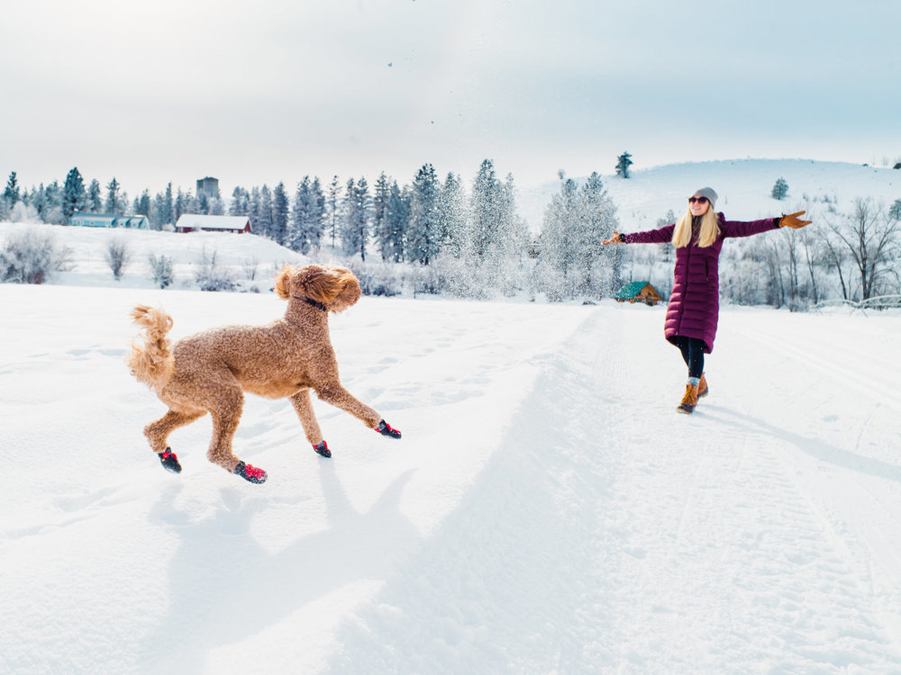 232-woman-and-goldendoodle-at-spring-creek-ranch-in-the-winter-methow-valley.jpg