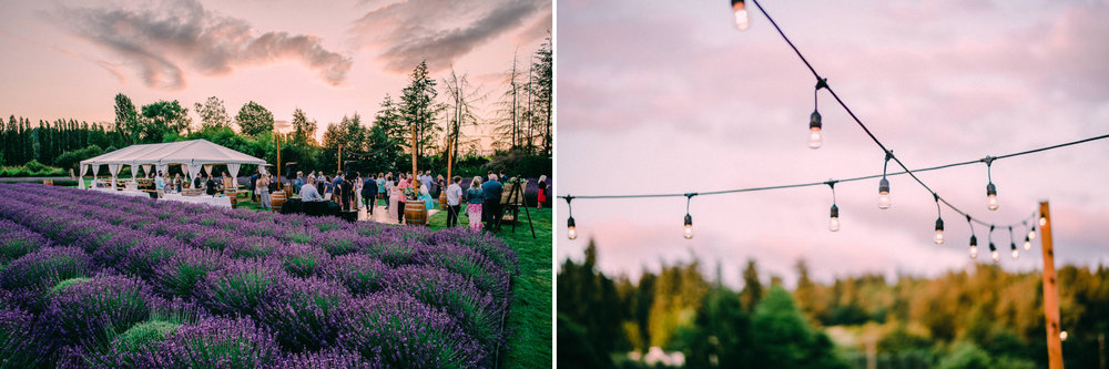 105-woodinville-lavendar-farm-wedding-with-golden-glowy-photos.jpg