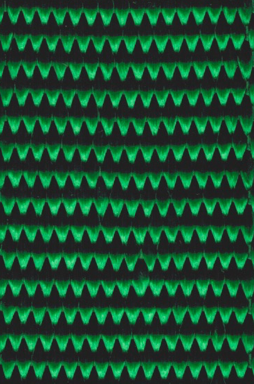 Dark_Green_Nylon.png