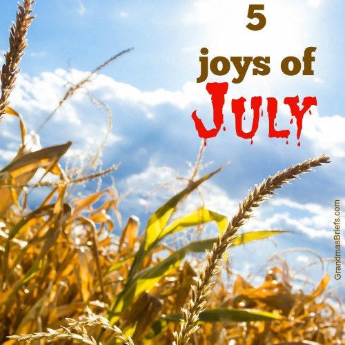 joys of july