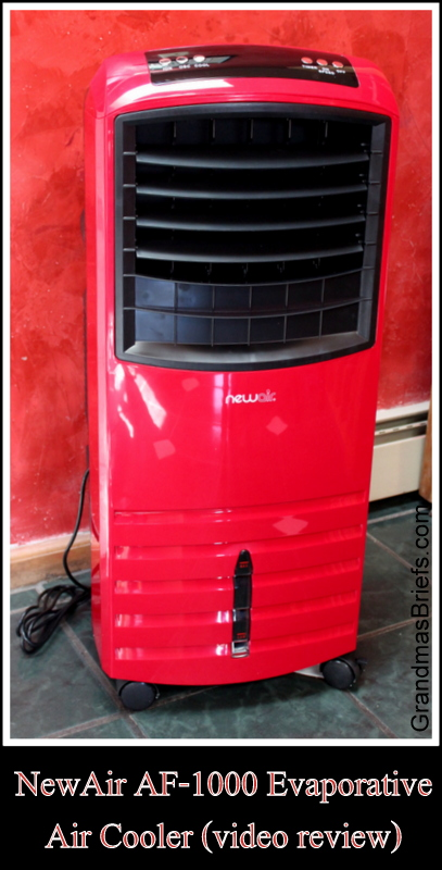 NewAir evaporative cooler
