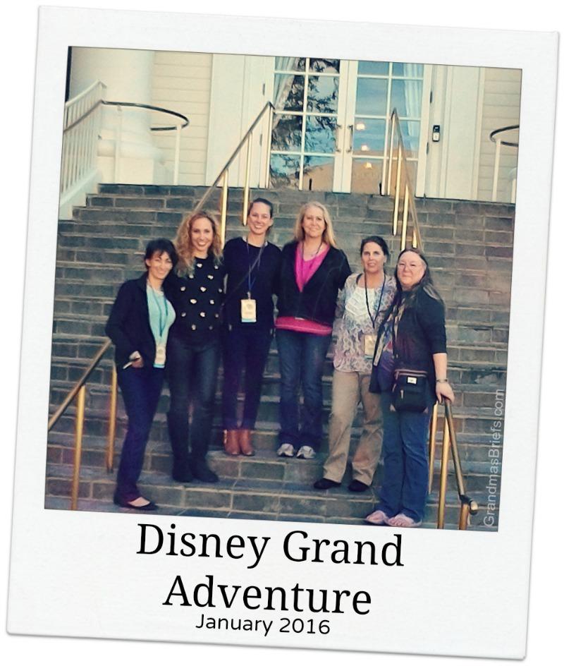 Disney Grand Adventure media