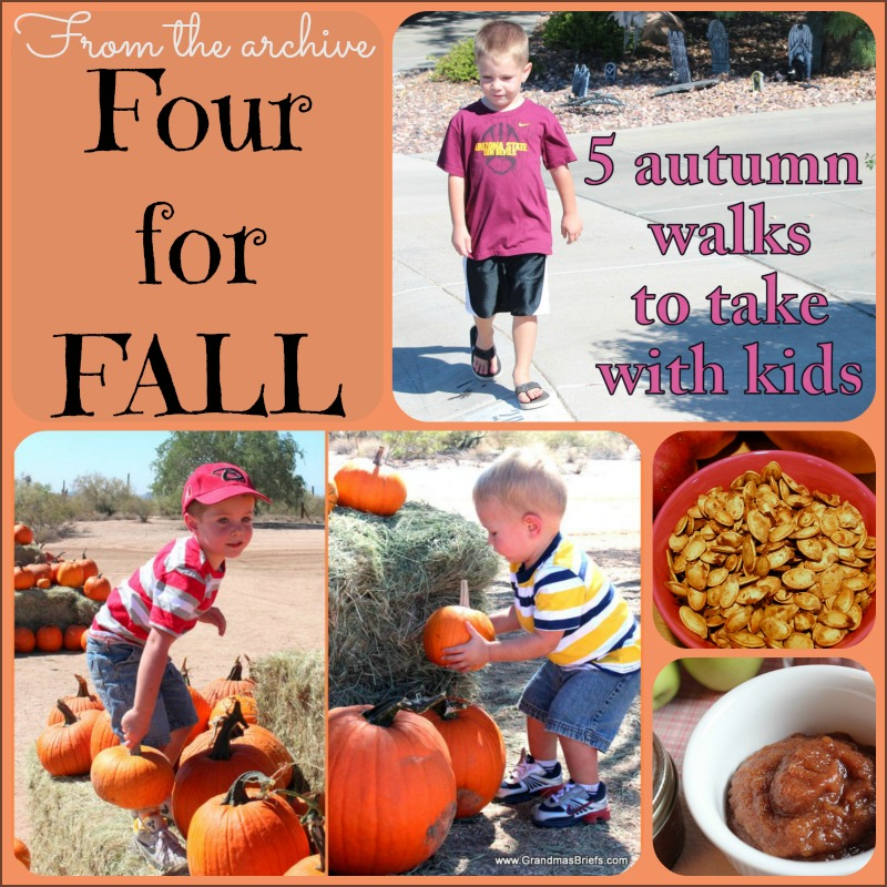 fall recipes and fun