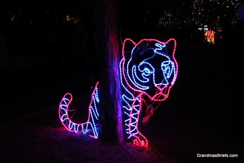 zoo+lights+1.jpg