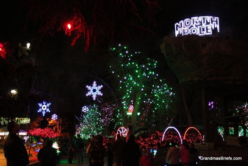 zoo+lights+7.jpg