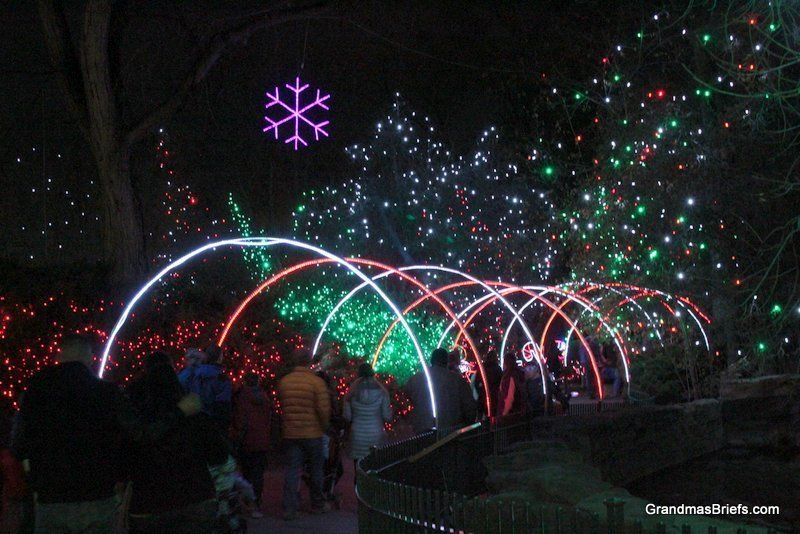 zoo+lights+8.jpg
